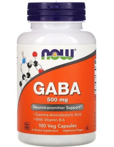 Now Foods, GABA, 500 mg, 100 kapslit
